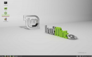 Install Linux Mint